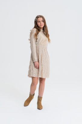 Lace Detailed A-Line Dress
