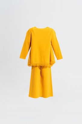 Yellow Full Sleeves Top