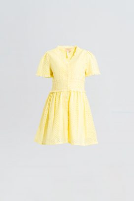 Half Sleeves Yellow Dress